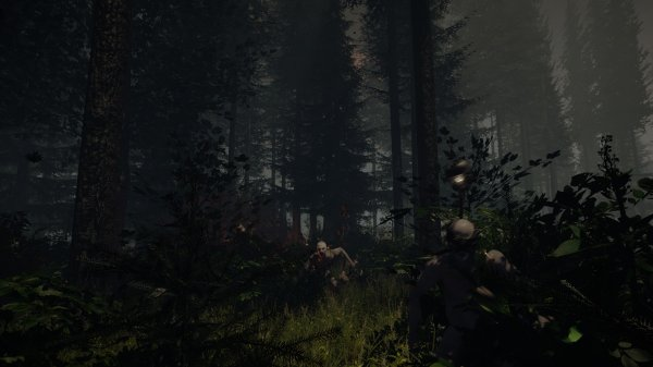 Игра: The Forest (2014) PC – торрент