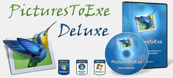 PicturesToExe Deluxe 8.0.20