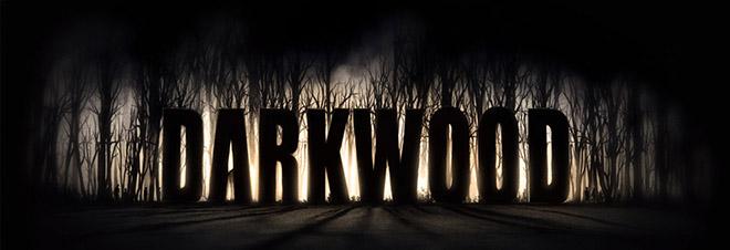 Darkwood Beta v3.1 - шалость получай стадии разработки