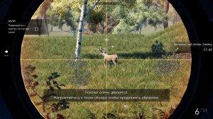 Hunting Simulator v1.1 – полная версия на русском