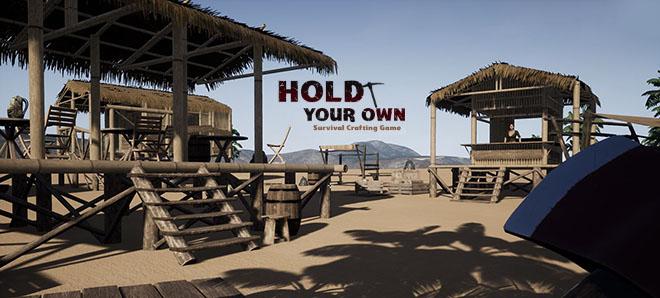 Hold Your Own v5.12 – игра на стадии разработки